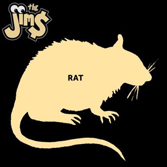 the jims - rat